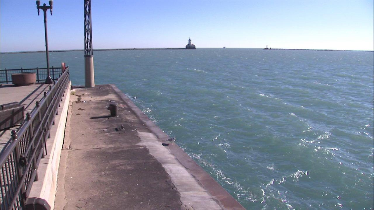 The good Samaritan said the man appeared to be hallucinating before jumping into Lake Michigan