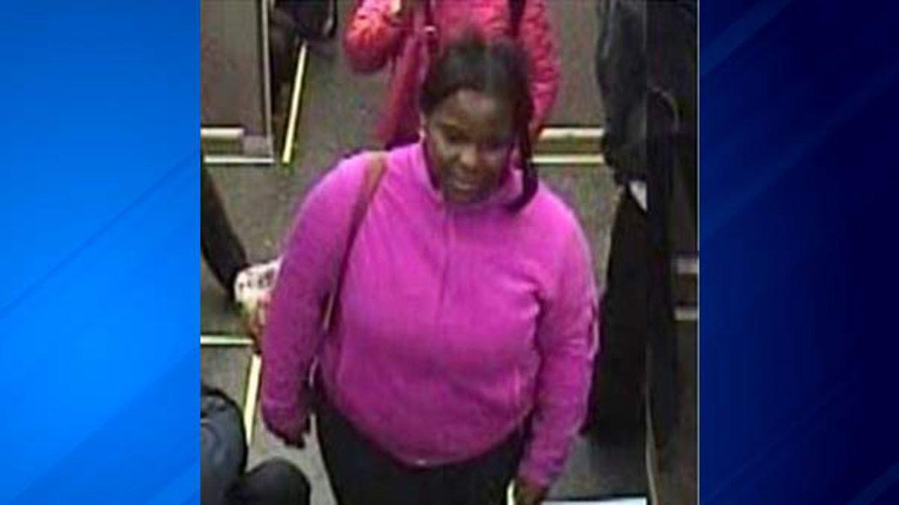 Police are searching for a woman who tried to rob a female and pulled her hair on board a CTA Red Line train.
