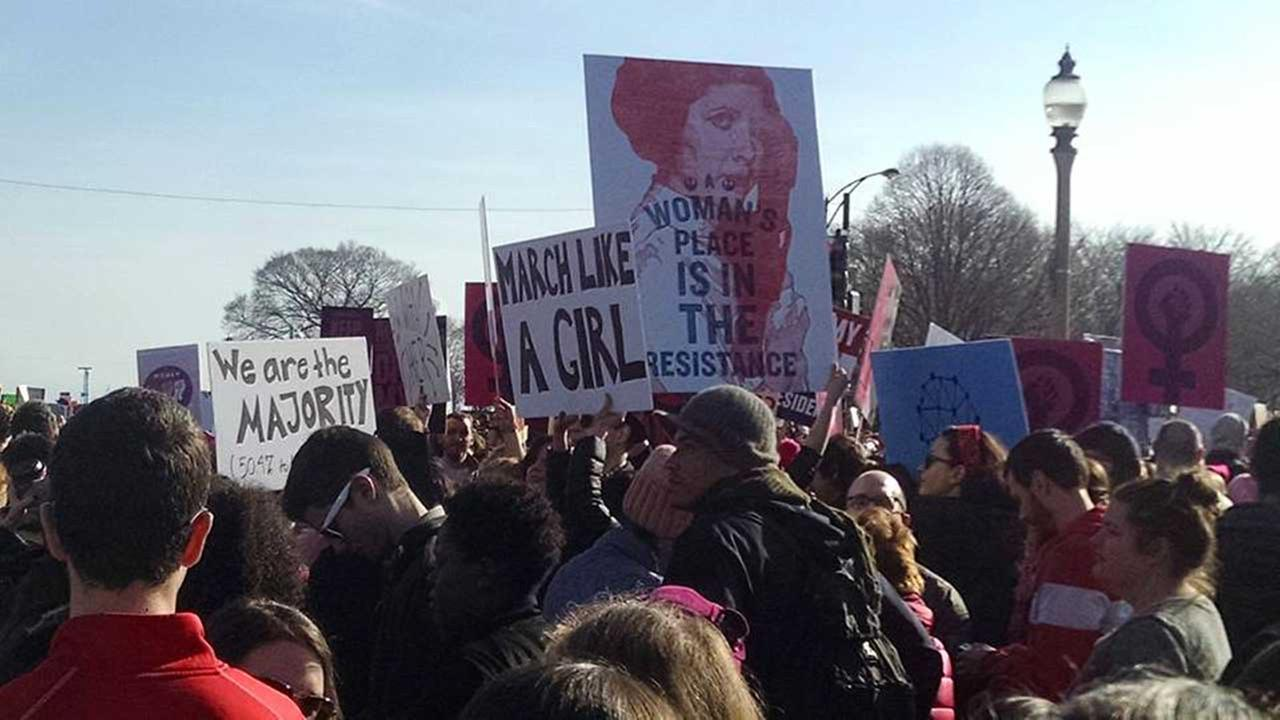 Womens March on Chicago in Grant Park on January 21, 2017.Pam Stutzman
