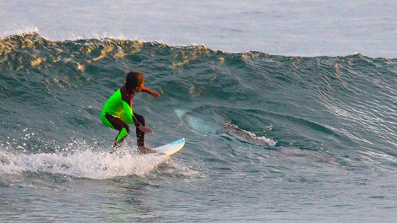 In this photo from Jan. 24, 2017, provided by Chris Hasson, 10-year-old Eden Hasson, Chris son, surfs near what is believed to be a great white shark at Samurai Beach.