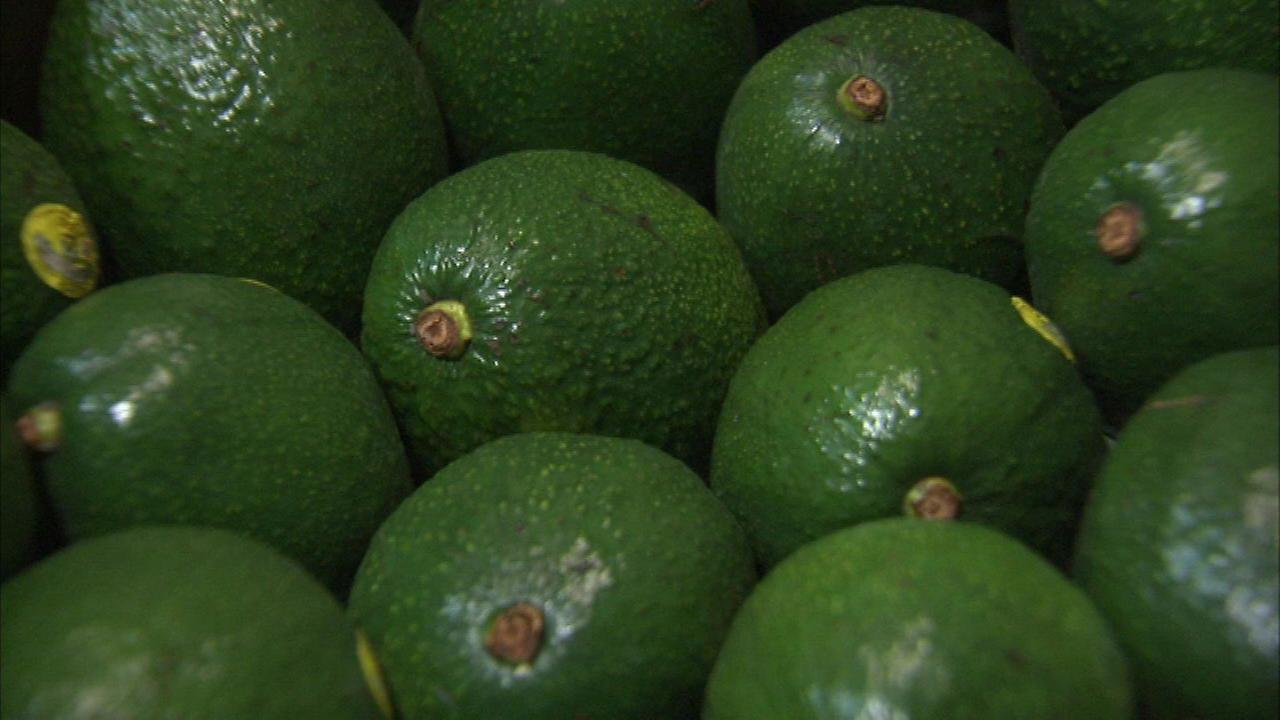 Avocado prices may rise with Mexican import tax