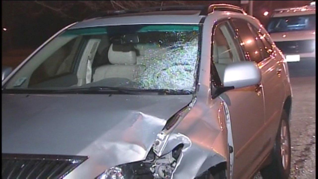 A woman was killed after being struck by an SUV on Lake Shore Drive Saturday night.