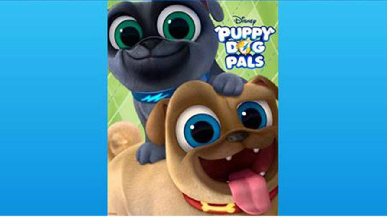 Created by comedian Harland Williams, Puppy Dog Pals follows two fun-loving pug brothers named Bingo and Rolly.