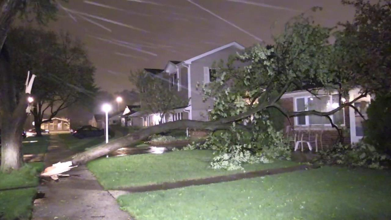 Tree falls on Oak Lawn home