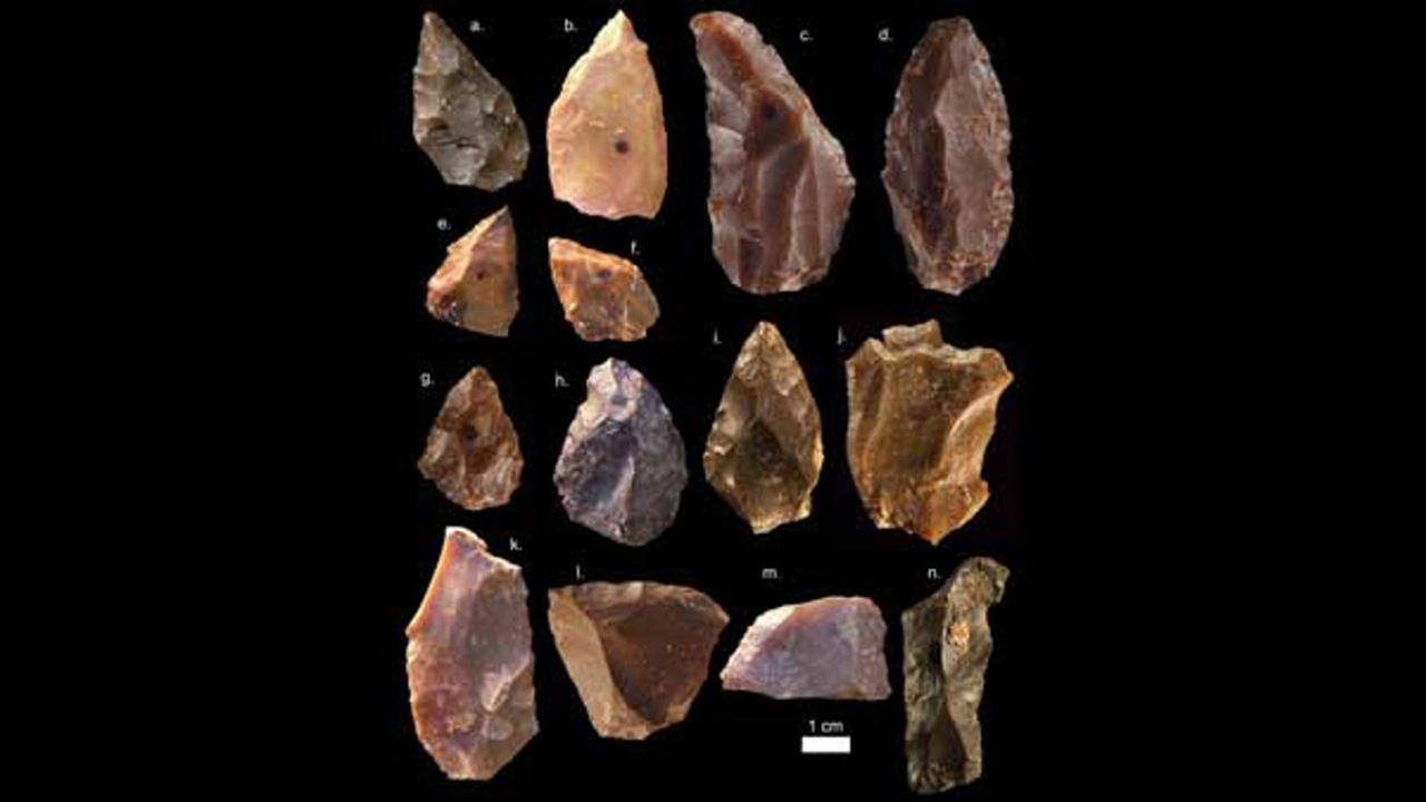 Stone tools recovered from the site reveal flint flakes shaped by early Homo sapiens with points and cores for more efficient hunting.Courtesy Mohammed Kamal/MPI EVA Leipzig