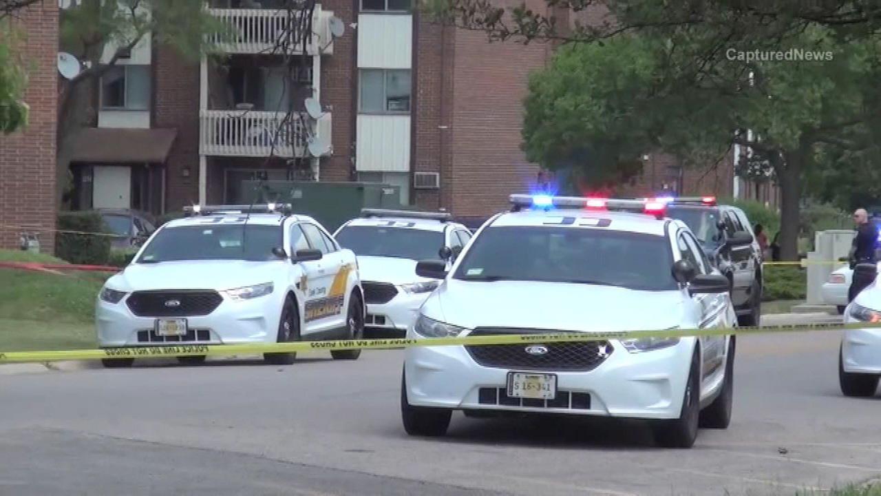 2 men shot near Arlington Heights