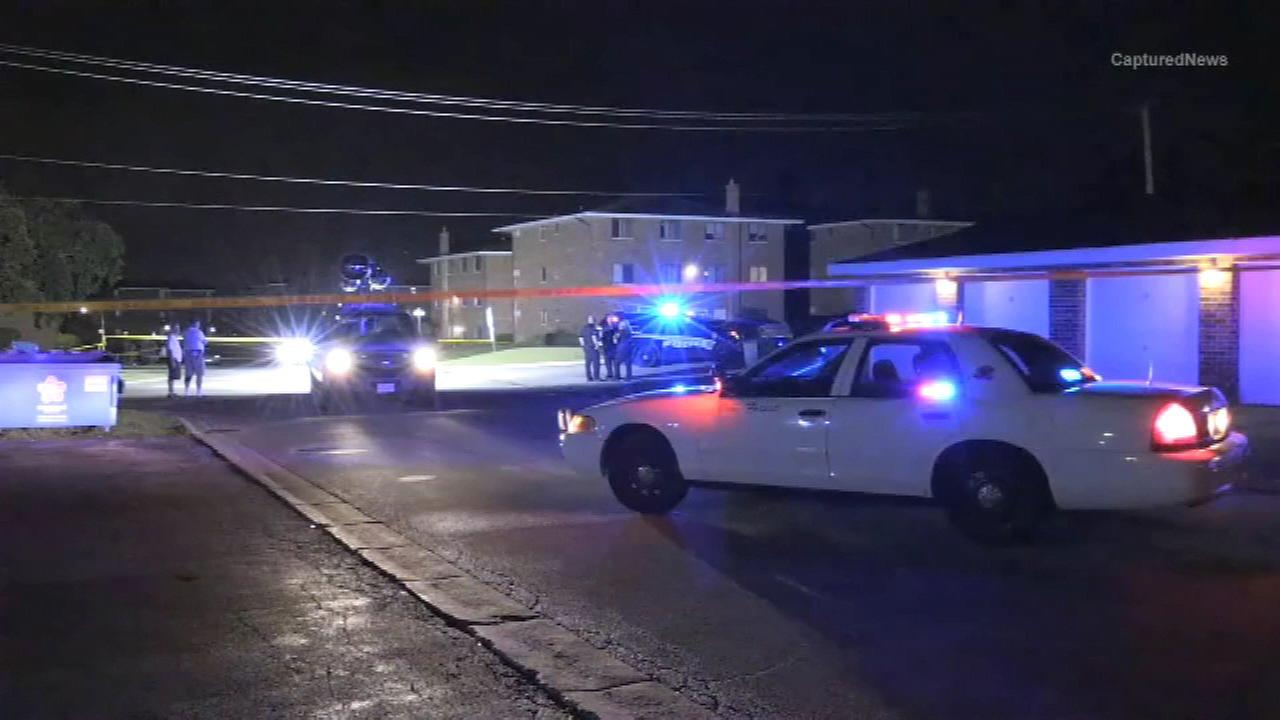 A teenage boy was shot several times Wednesday night in southwest suburban Oak Forest, police said.