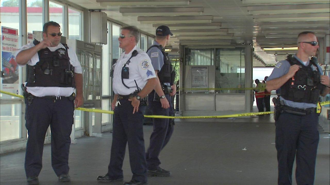 A person was stabbed in the stomach inside the 95th Street Red Line Station Sunday, Chicago police said.