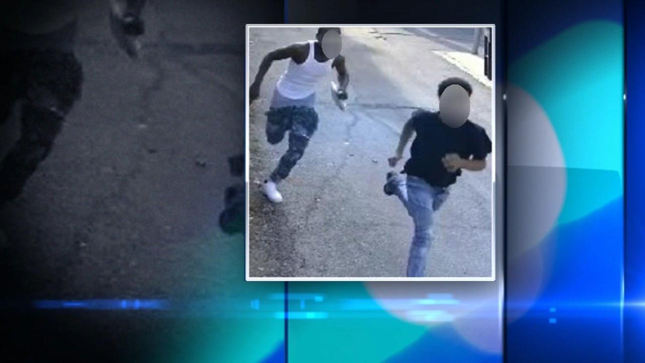 Two teens were charged in the robbery of an 80-year-old woman in Chicagos Lincoln Park neighborhood.