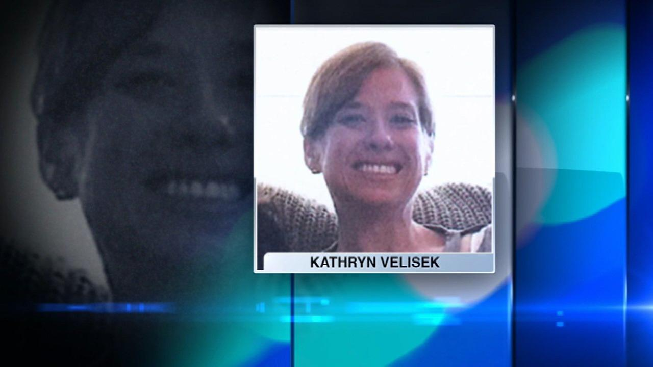 Woman, 35, reported missing from Lakeview