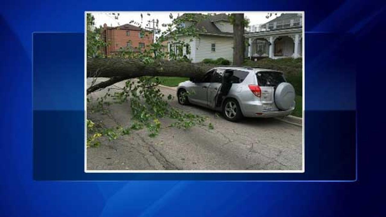 Tree falls on SUV on Far Northwest Side