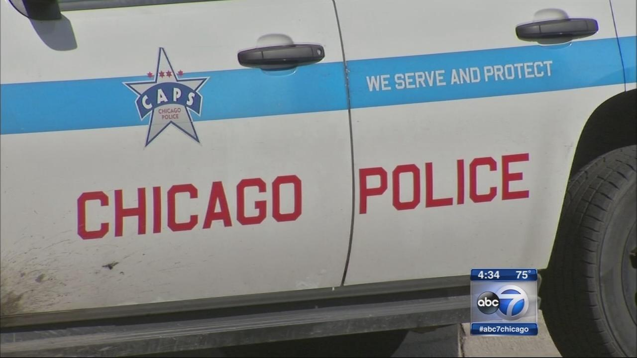 Teen arrested in Roscoe Village mugging