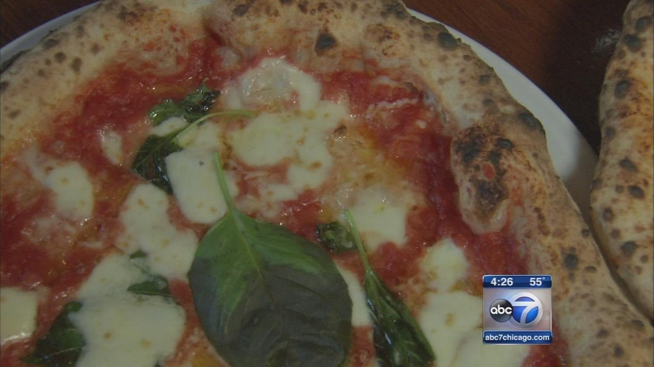 Hungry Hounds top pizza picks