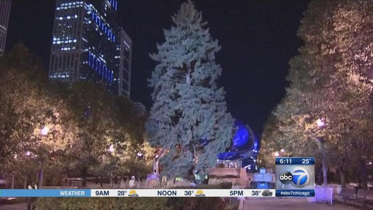 Chicago Christmas tree lighting ceremony tonight
