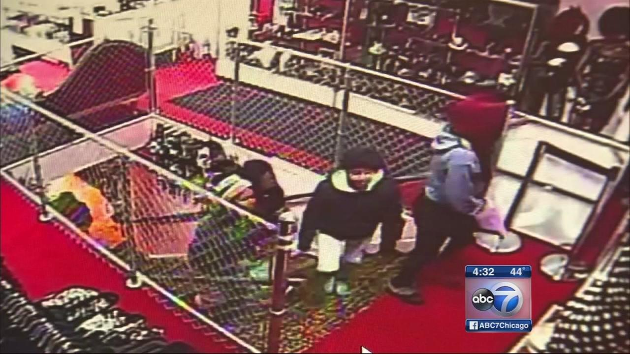 Lakeview businesses targeted by thieves