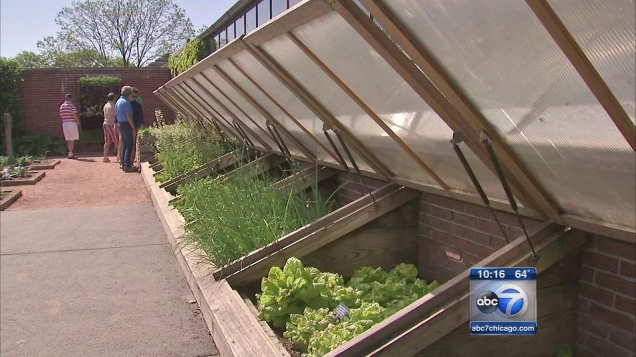 Chicago Botanic Garden revamps kitchen program