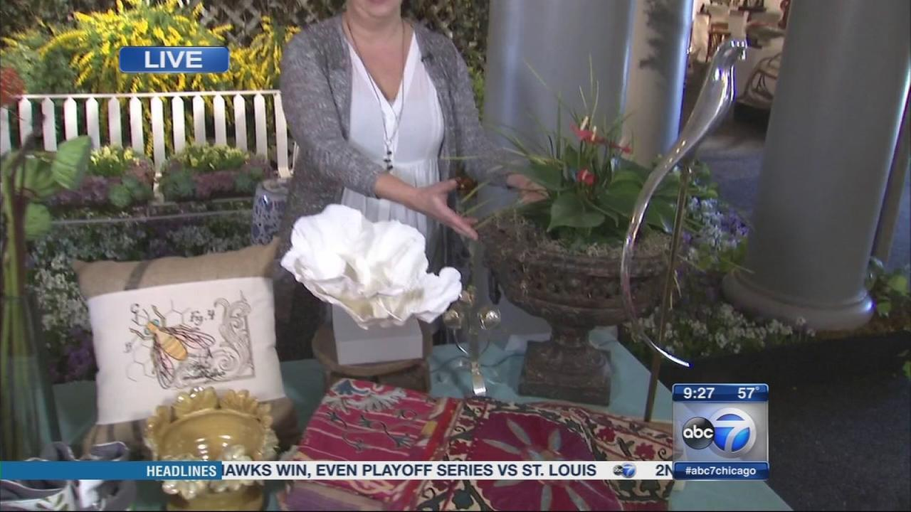 Orchid Show at Chicago Botanic Garden abc7chicagocom