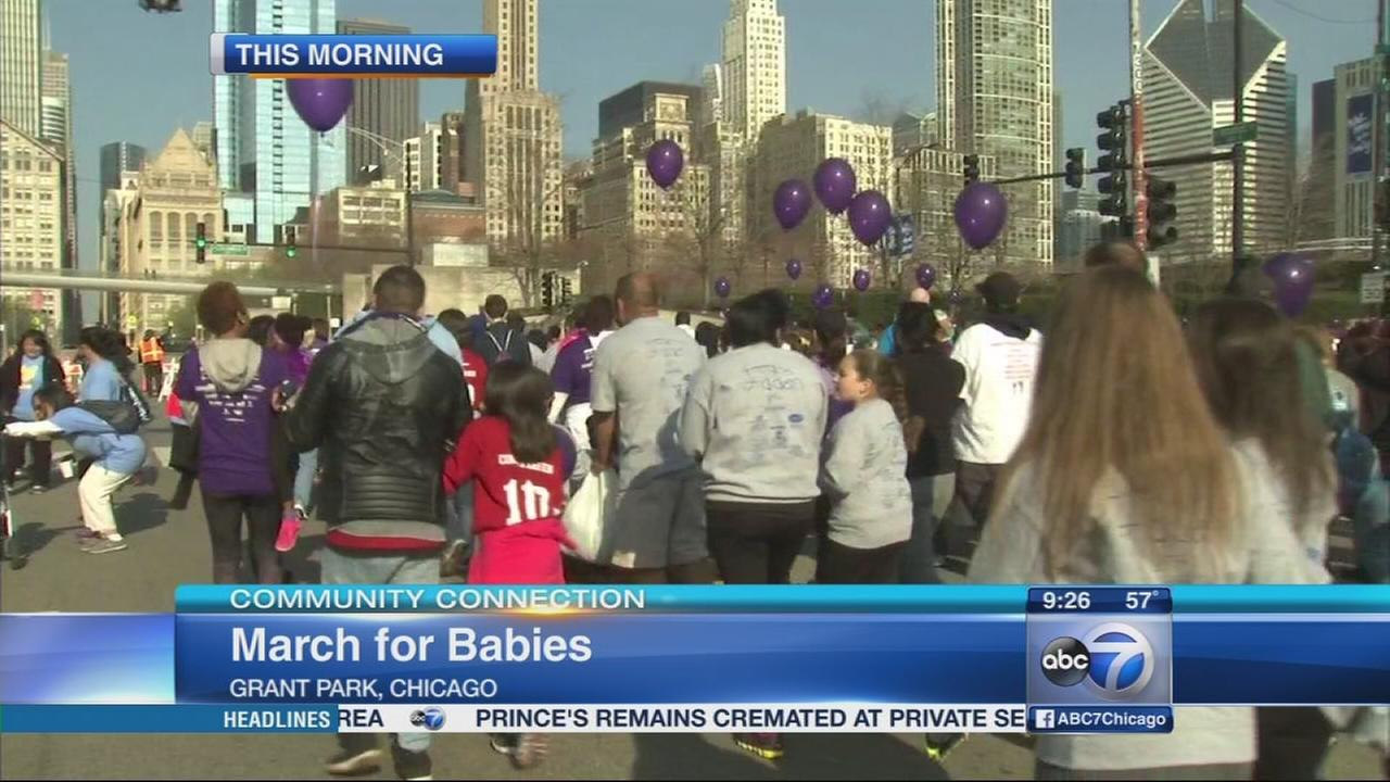 Celebrate Life at March for Babies