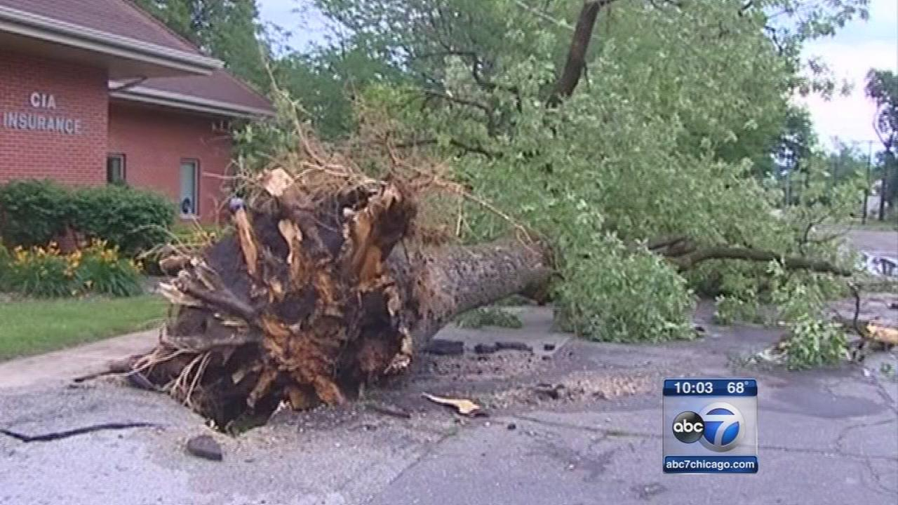 Powerful storm knocks down trees, damages houses