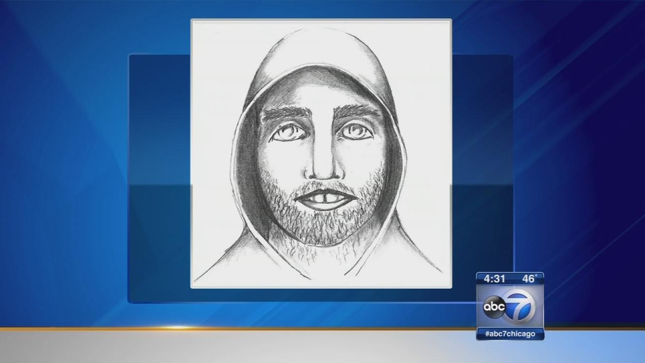 Attempted abduction in South Elgin