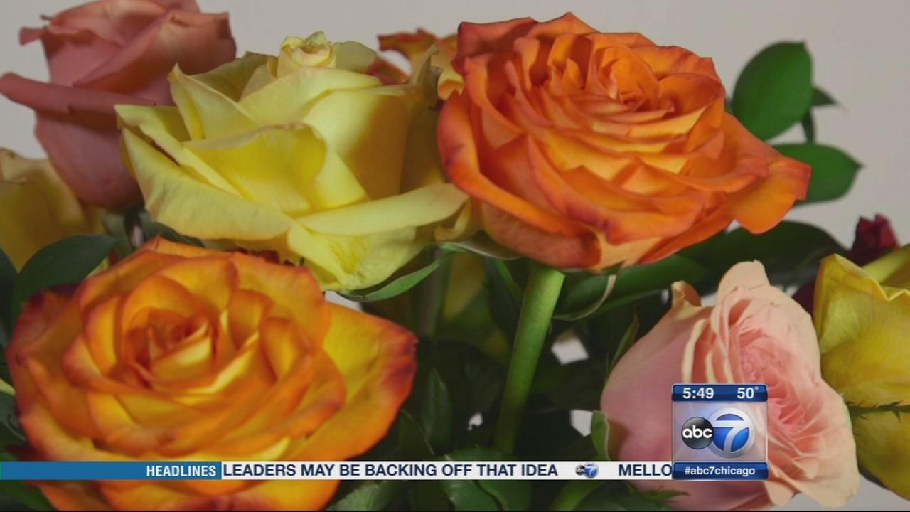 Consumer Reports: Flowers for Mothers Day