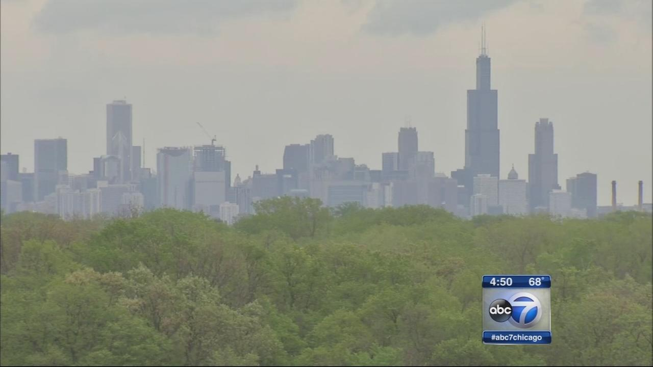 Pollen and allergies spike during wet May