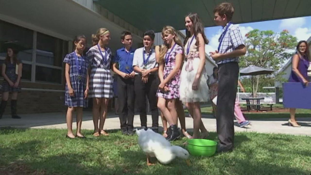 Duck walks in graduation with class he grew up in