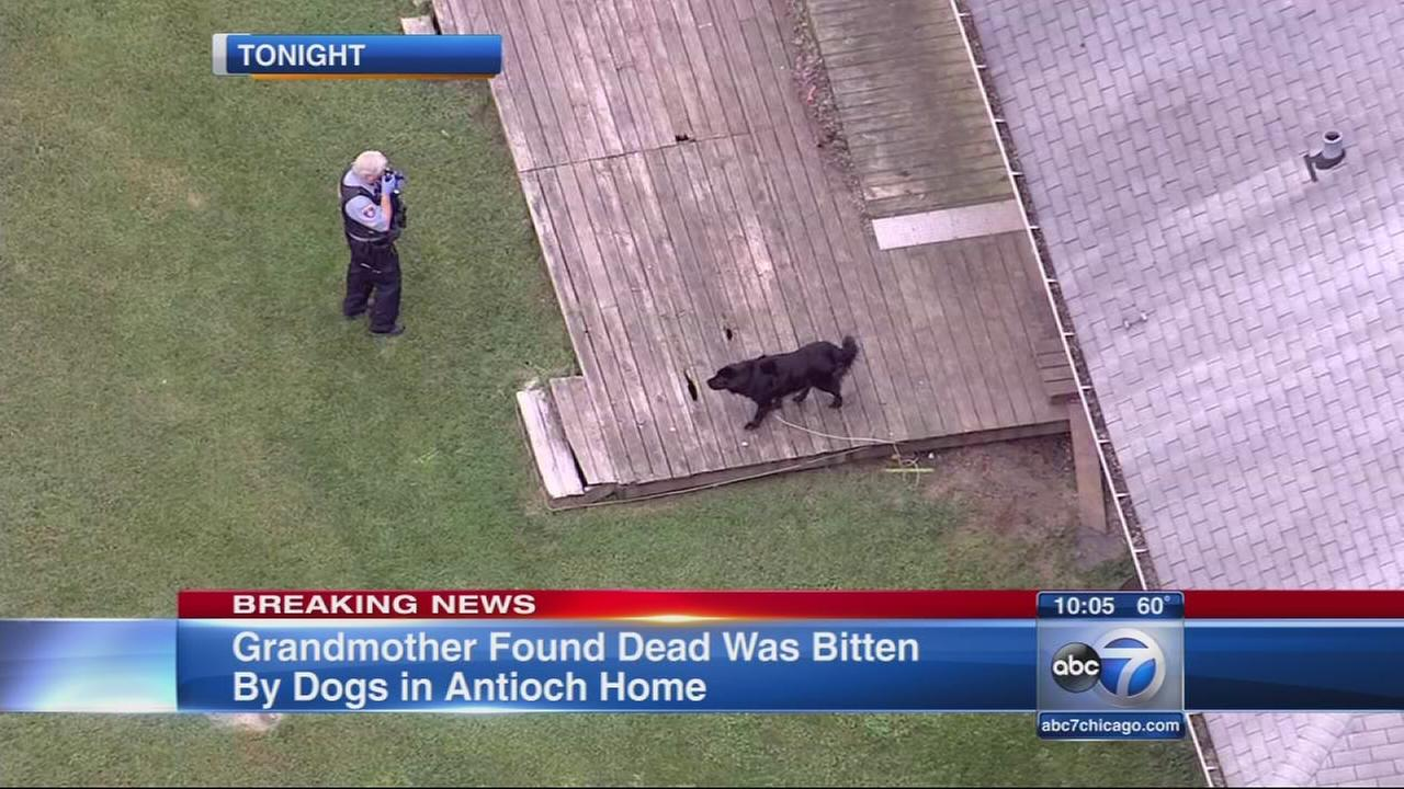 Woman found dead with dog bites