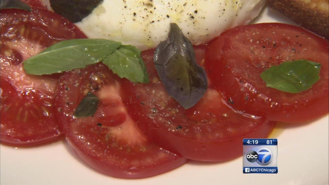 Tomatoes grown under glass gracing city menus year round