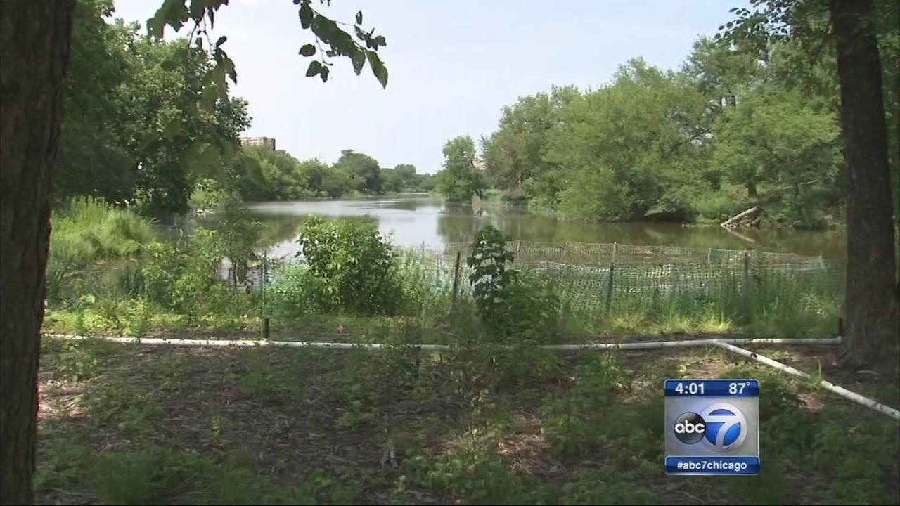 Jackson Park chosen for Obama library