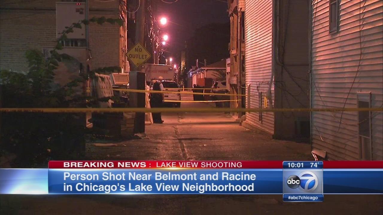 Man shot in Lake View