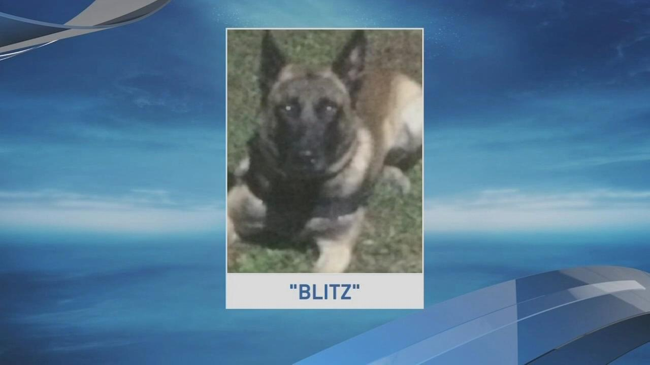 K9 dies in hot squad car downstate