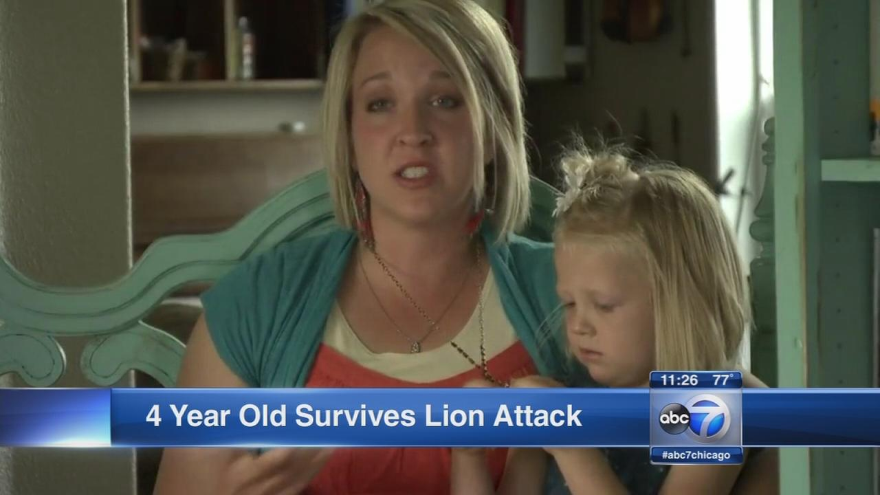 Family camping in Idaho saves 4-year-old girl from mountain lion