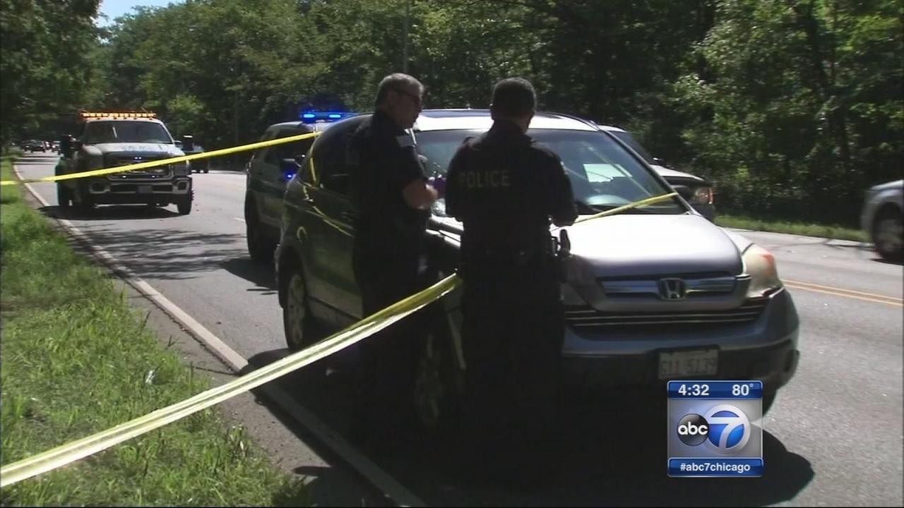 Woman fatally struck while jogging in Norwood Park ID?d