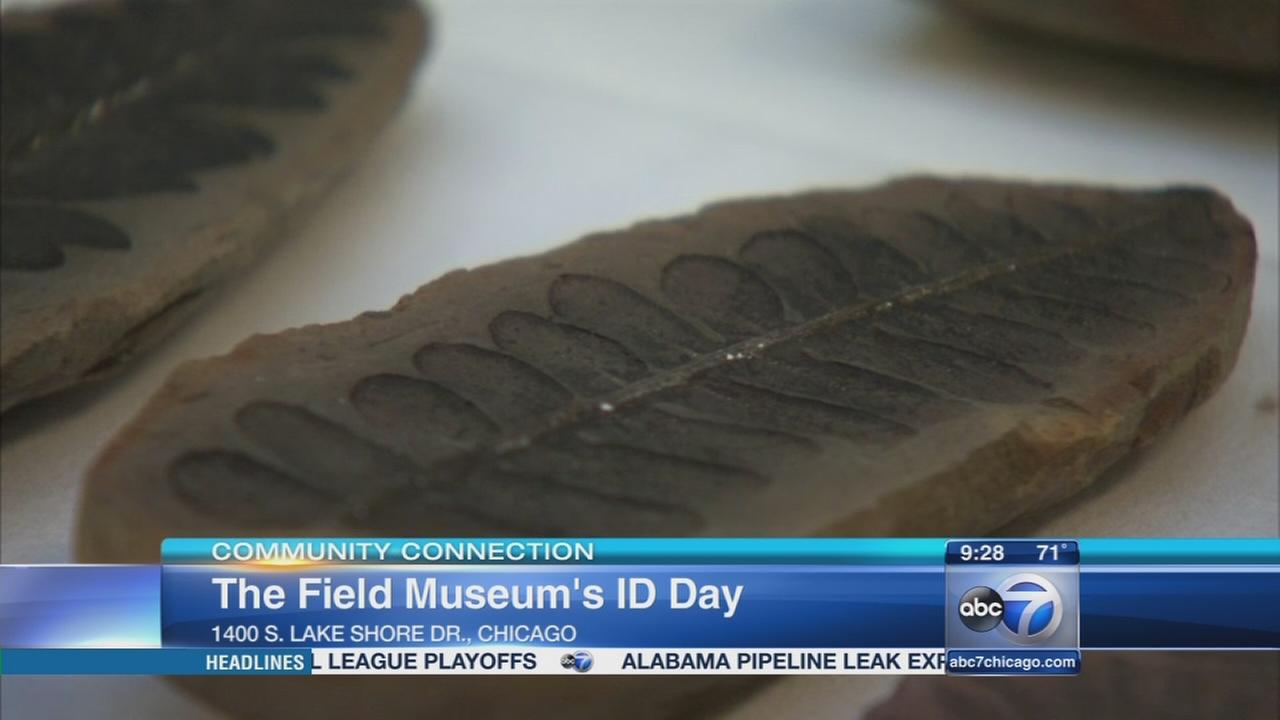 Share discoveries at Field Museum?s ID Day