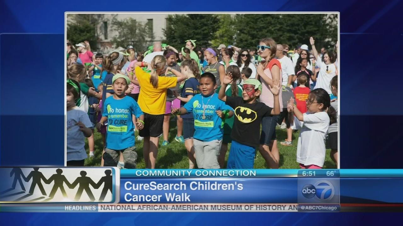 092416-wls-cancerwalk-vid