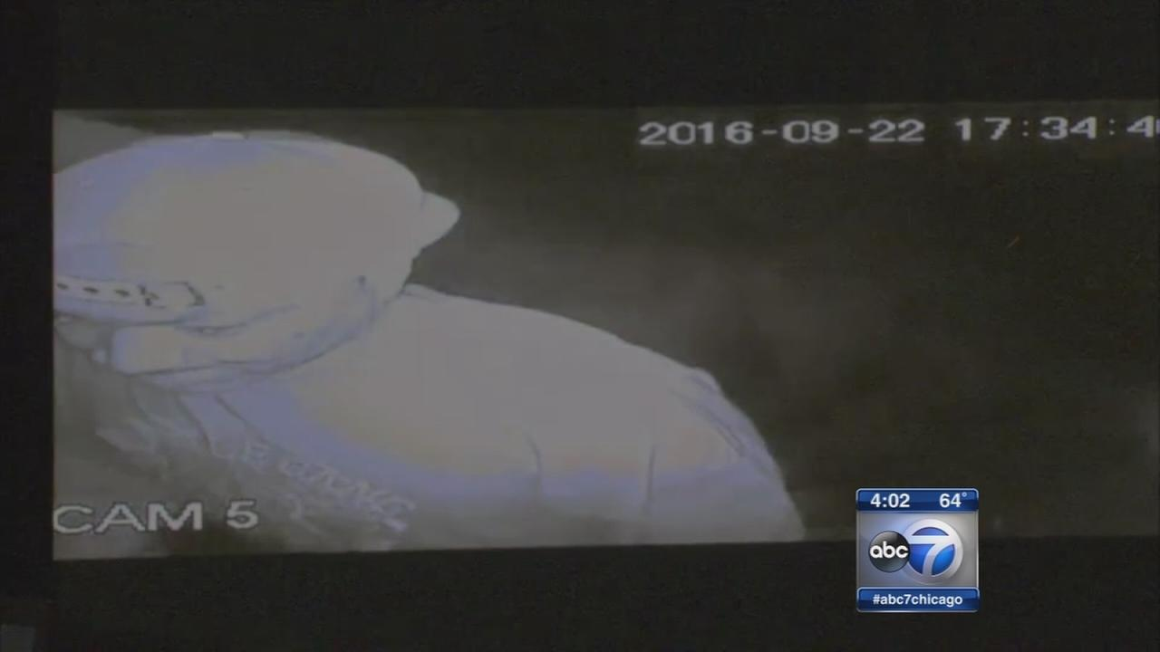 Harvey police release surveillance video in abduction attempt