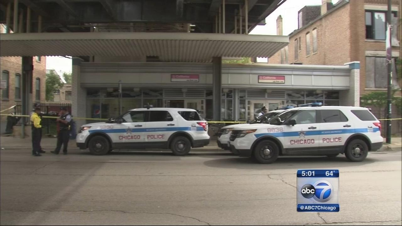 Man killed at Pink Line CTA station