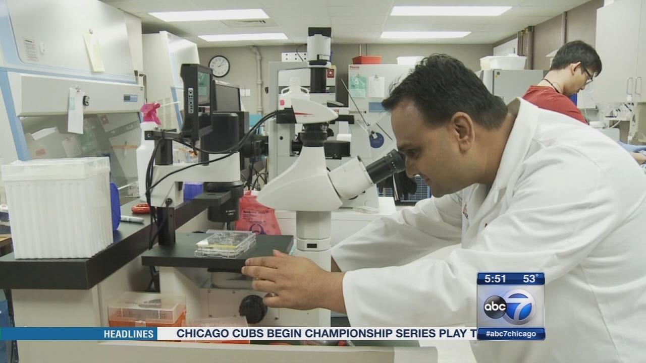 Study shows patients stem cells can fix heart damage