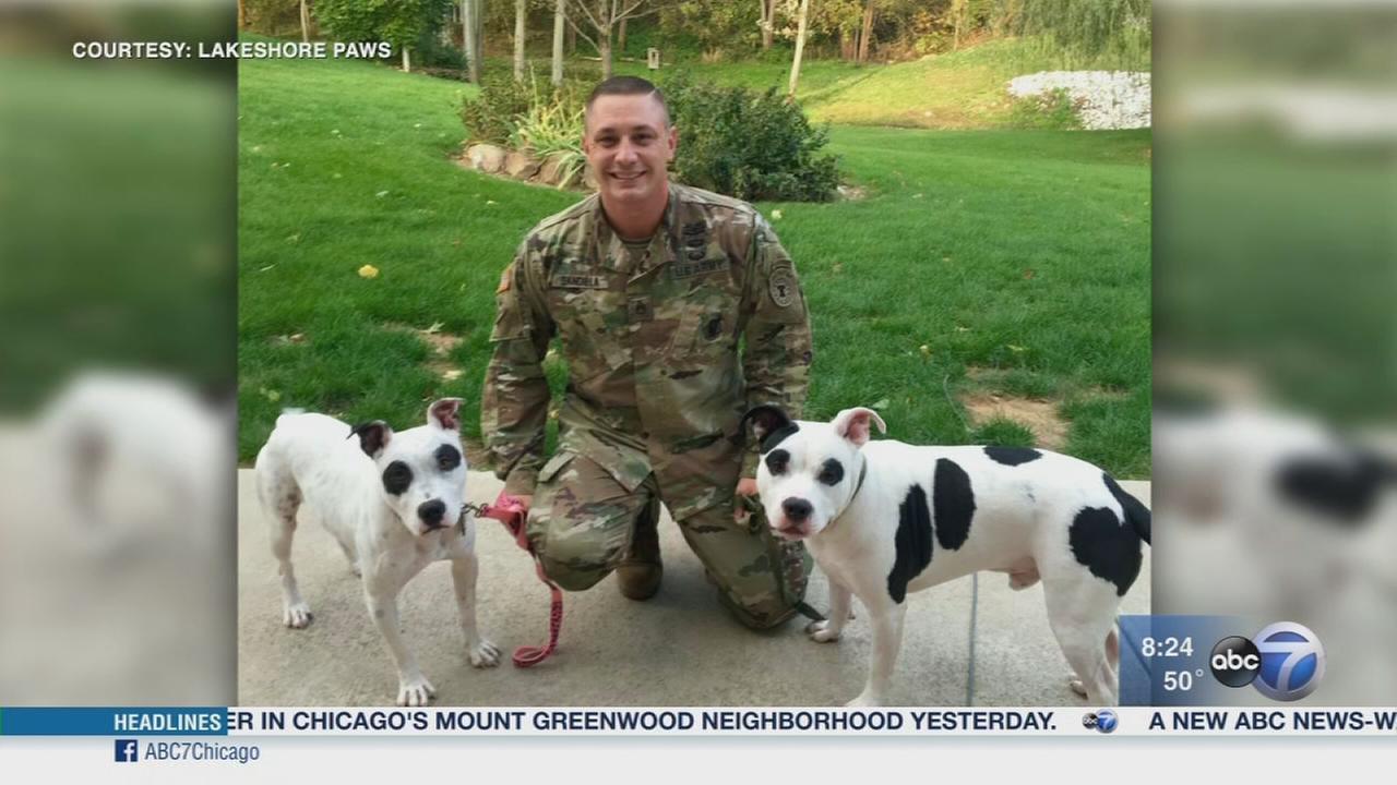 Fifth Third Bank hosting Veterans Day of Appreciation