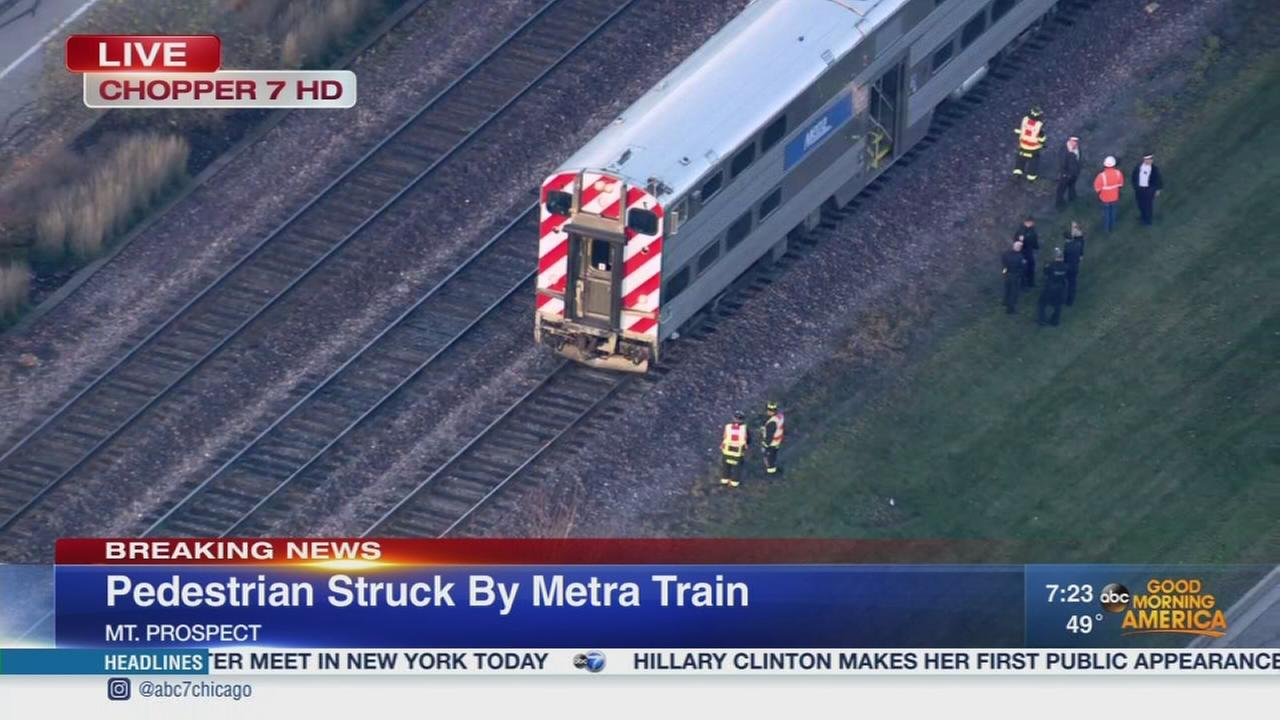 Metra train strikes pedestrian