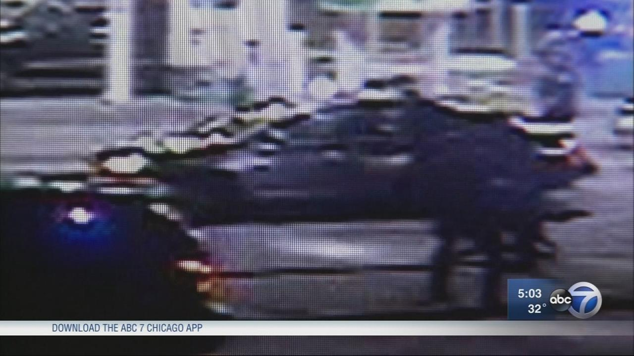 Waukegan police officer dragged by driver of stolen car during getaway