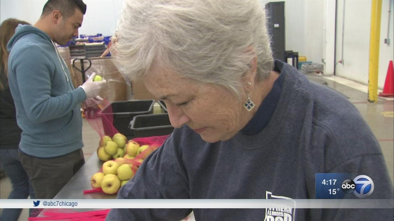 Volunteers work hard for Northern Illinois Food Bank