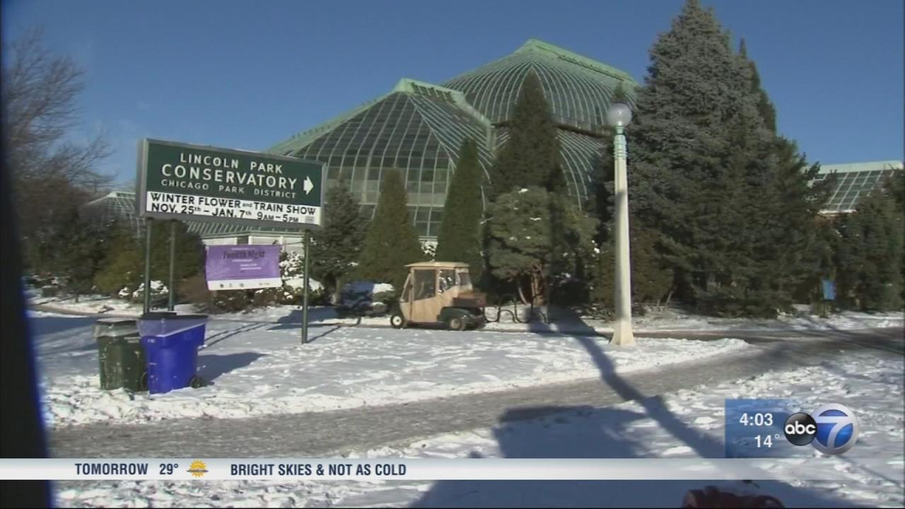 Lincoln Park Conservatory draws crowds on cold day