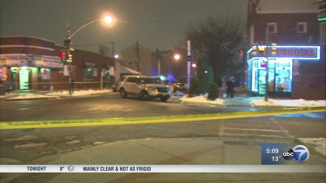 2 killed in Brighton Park shooting