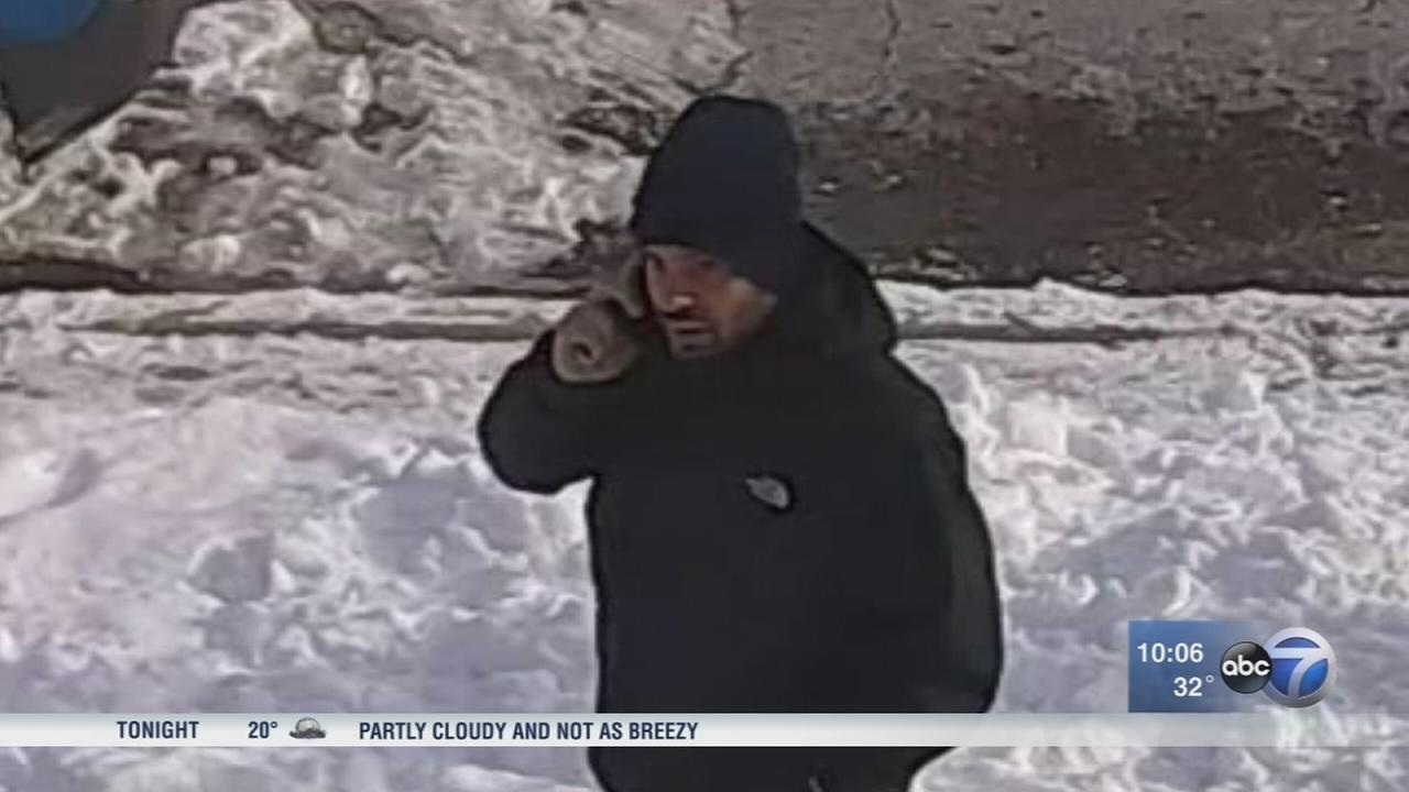 Police searching for serial package thief on Northwest Side