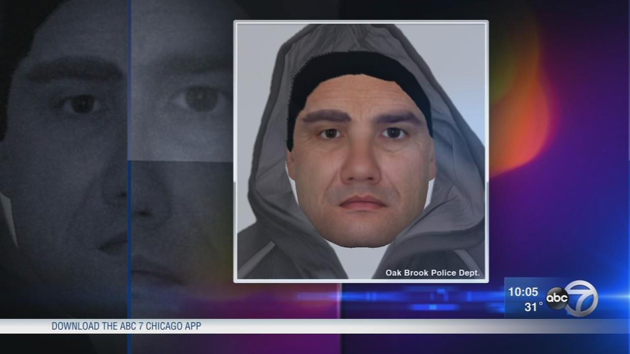 Sketch released in purse snatching at Oak Brook mall