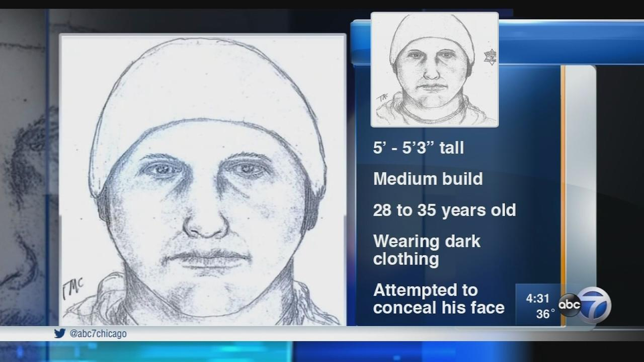 Sketch released in Rolling Meadows sex assault