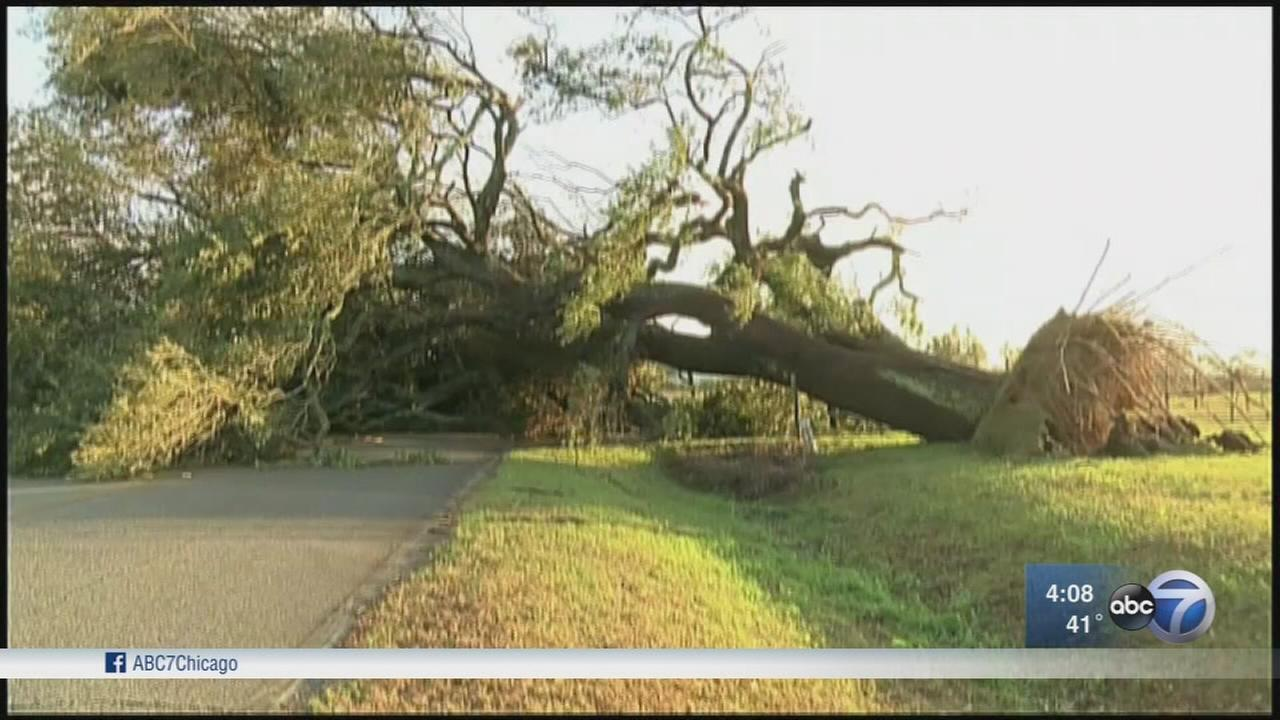 Storm death toll at 20 in the South
