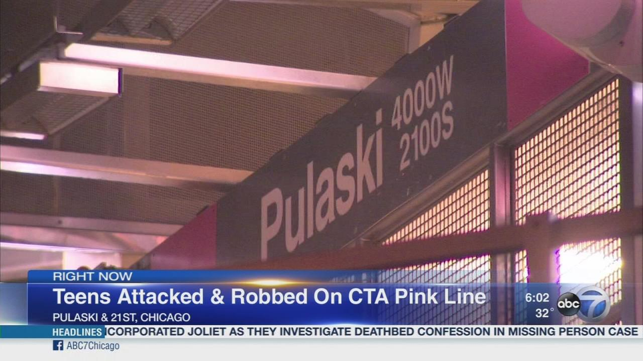 Teens attacked on Pink Line